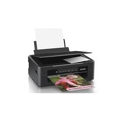 Epson Expression XP-241 - Impresora multifunción - color - chorro de tinta - A4 (210 x 297 mm), Letter A (216 x 279 mm) (original) - A4/Legal (material) - hasta 27 ppm (impresión) - 50 hojas - USB 2.0, Wi-Fi(n)
